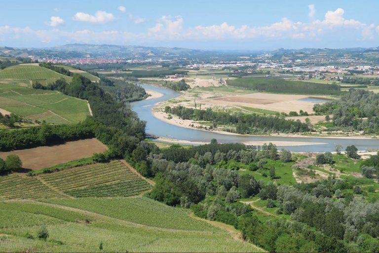 Nebbiolo d'Alba, la nobiltà del vino