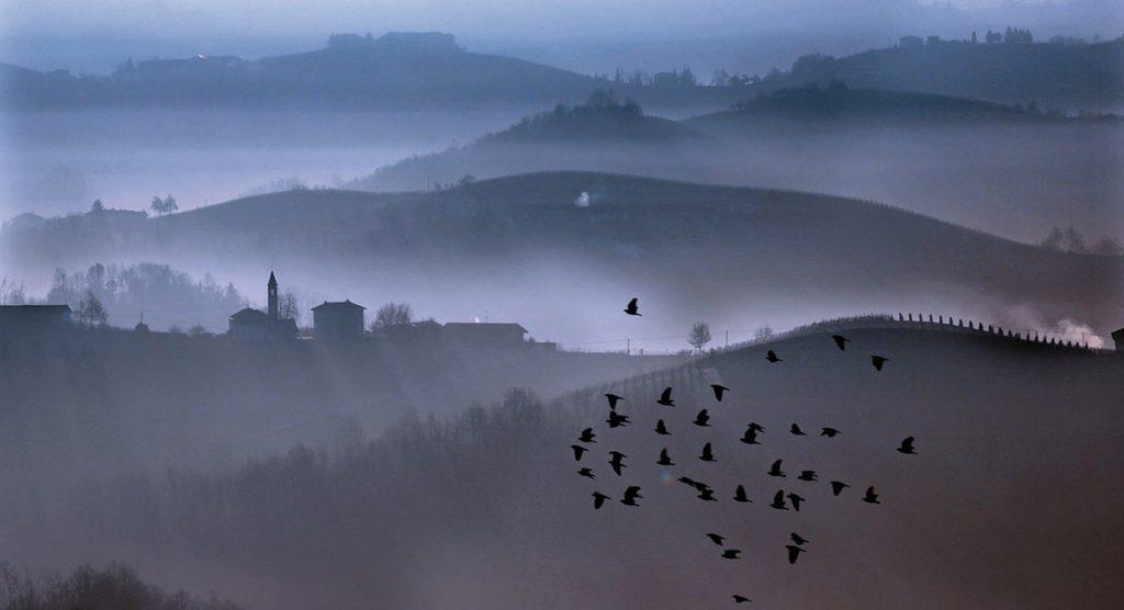 """Stormi d'uccelli neri, com'esuli pensieri…"" (San Martino, G. Carducci)"