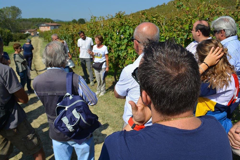 25 nazioni creano l'Organizzazione Mondiale del Turismo del Vino