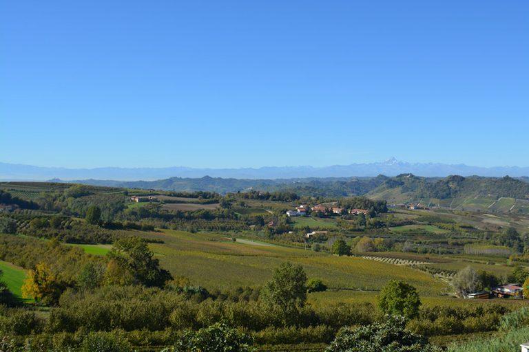 Il Food&Wine Tourism Forum 2021 conferma l'enogastronomia come motore principale della nostra offerta turistica